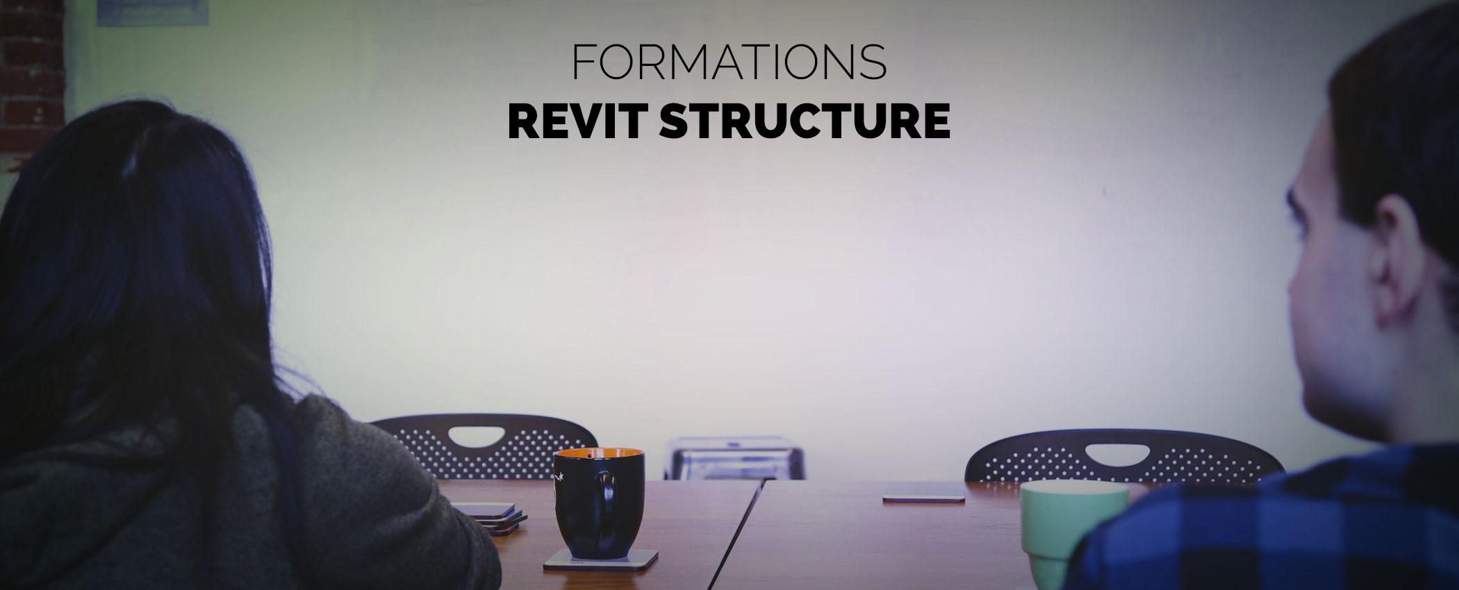 Formation Revit Structure