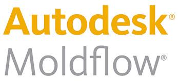 MoldflowTypo